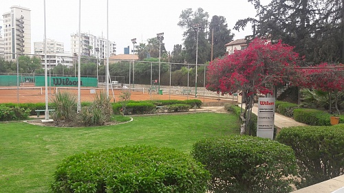 Nicosia Field Club TE U14 2019